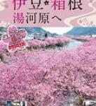 「伊豆・箱根・湯河原へ」パンフレット