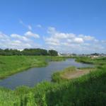 県立境川遊水地公園