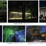 梅小路公園ライトアップ