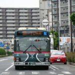 いすゞ PDG-LV234L2(ゼブラ復活塗装)【2009年式】