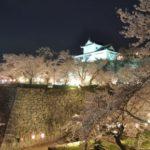津山城(鶴山公園)夜桜(イメージ)
