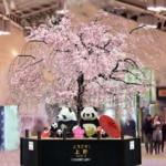 グランドコンコースに登場する巨大枝垂れ桜(イメージ)