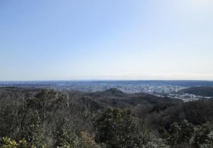 峯主山から望む「飯能・西武の森」