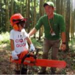 林業体験(イメージ)