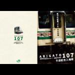 「ARIGATO(ありがとう)107系引退記念入場券」(硬券)