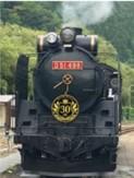 SL D51 498 オリジナルヘッドマーク(イメージ)